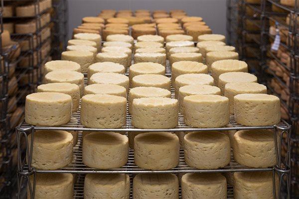 Cơ hội đẩy mạnh xuất khẩu bơ sữa vào thị trường Israel